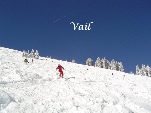 Vail Mountain Powder